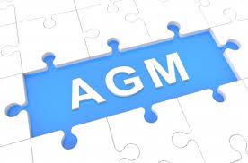 AGM puzzle